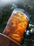 iced tea Royaltyfria Foton