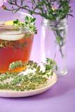 iced tea royaltyfri foto