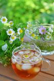 Iced tea in garden Royalty Free Stock Photos