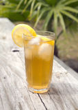Iced Tea. In a glass with lemon outdoors stock photography