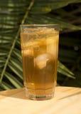 Iced Tea Stock Image