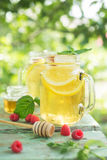Iced tea with lemon and raspberry. Royalty Free Stock Photography