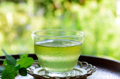 Iced tea with mint leaves Stock Photography