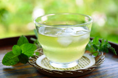 Iced tea with mint leaves Royalty Free Stock Photos