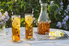 Iced Tea Outside in Garden. Two tall glasses of iced tea with straws on a table outside in the garden. A glass pitcher and lemon slices are in the background and Royalty Free Stock Photo