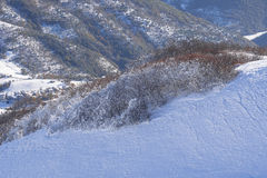 Iced trees on an edge, Mount Motette, Appenines Umbria, Italy Royalty Free Stock Images