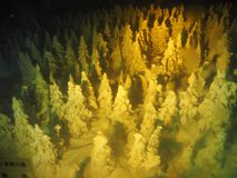 Iced Trees Monsters in Zao stock photography