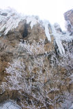 Icefall Royaltyfria Bilder