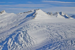 Icefield горы ледника Mendenhall Стоковые Фотографии RF