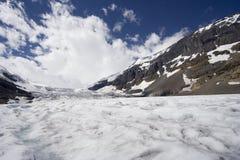 icefield columbii Fotografia Royalty Free