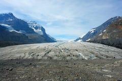 Icefield de Colombie Photos libres de droits