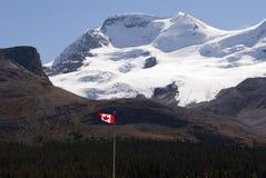 Icefield en Canadese vlag Royalty-vrije Stock Afbeeldingen
