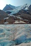 icefield för 3 alberta Kanada columbia Arkivfoto