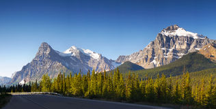 Icefield gångallé Banff Jasper Canadian Rockies Royaltyfri Fotografi
