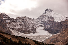 Icefield and glaciers Royalty Free Stock Photography