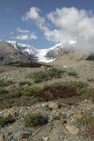 icefield kanadyjczyka Columbia rockies widok Zdjęcia Stock