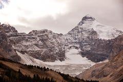 Icefield och glaciärer Royaltyfri Fotografi