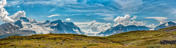 Icefield Park Glacier view panorama Royalty Free Stock Images