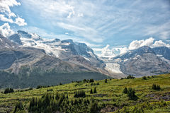 Icefield Park glacier view on sunny day Royalty Free Stock Image