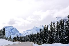 Icefield Parkway, Alberta. Stock Image