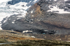 Icefield Parkway stapianie Obrazy Stock
