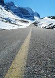 icefield road Zdjęcie Royalty Free