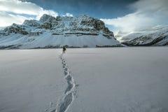 Icefields gångallé i kanadensiskt stenigt Arkivbild