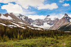 Icefields Parkway- Banff National Park- Alberta- CA Royalty Free Stock Photos