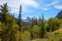 Icefields Parkway- Banff National Park-Alberta- Canada Royalty Free Stock Photos