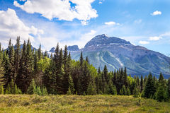 Icefields Parkway- Banff National Park-Alberta- Canada Stock Images