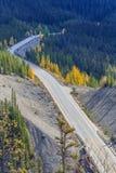 Icefieldsbrede rijweg met mooi aangelegd landschap Stock Fotografie