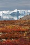 icefjord kangia 免版税库存图片