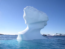 Icehead Royalty Free Stock Photo