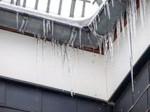 Iceicle Image libre de droits