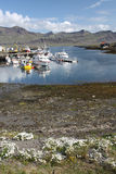 Iceland. Djupivogur - small fishing town in Iceland. Mountains and fjord Stock Photo