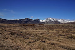 Iceland. Pastureland with rocky mountain in Iceland royalty free stock photos