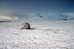 Iceland. Bale in Snow Covered Field stock photo