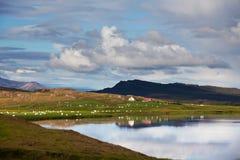 iceland royaltyfri bild