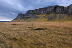 Iceland, Beautiful arctic landscape, wild field Royalty Free Stock Images