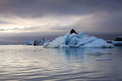 Iceland: Evening at a glacier lake Royalty Free Stock Images