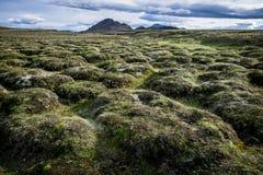 Iceland_Fjord_stream2 Стоковые Изображения RF