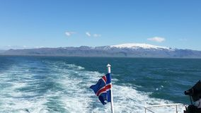 Iceland flag royalty free stock images
