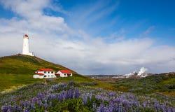 iceland fyr Royaltyfri Fotografi