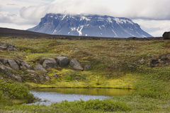 Iceland. Herdubreid Mountain. Highland region. F88 Road. Royalty Free Stock Photos