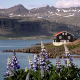 Iceland houses Royalty Free Stock Photo