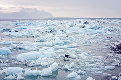 Iceland Icebergs  Stock Photos