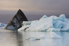 Iceland: Icebergs in a calm glacier lake Royalty Free Stock Photography