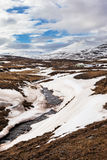 Iceland krajobraz w wiośnie fotografia royalty free