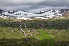 Iceland landscape. Along the eastern fjords in Iceland royalty free stock photos