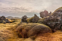 Iceland Landscape with Moss and Rock. Lava Rocks and Evening Blue Sky in Background. Royalty Free Stock Images